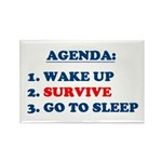 AGENDA TO SURVIVE Rectangle Magnet (100 pack)