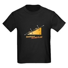 Snakes/Inclined Plane T