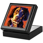 Coon Hound Keepsake Box