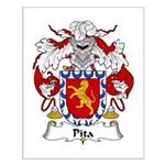 Pita Family Crest Small Poster