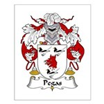 Pegas Family Crest Small Poster