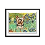 IRISES / Yorkie (17) Framed Panel Print