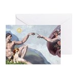 Creation of the Beagle Greeting Cards (Pk of 20)