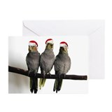 We Three Tiels Chrismtas Cards (Pk of 20)
