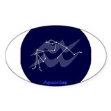 Aquarius Oval Decal
