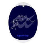 Aquarius Oval Ornament