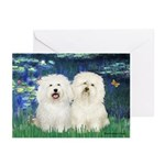 Lilies (#5) & 2 Bolognese Greeting Cards (Pk of 20