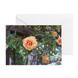 Peach Colored Roses Photo Card