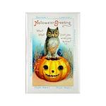 Halloween Owl & Pumpkin Rectangle Magnet (10 pack)