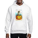 Halloween Owl & PUmpkin (Front) Hooded Sweatshirt