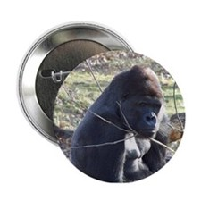 Gorilla Button