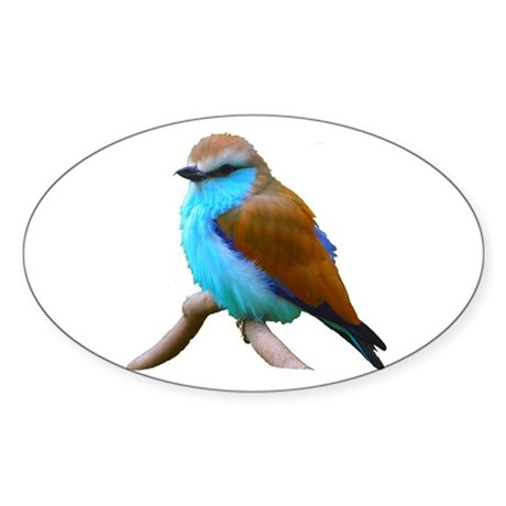 Bluebird Oval Sticker