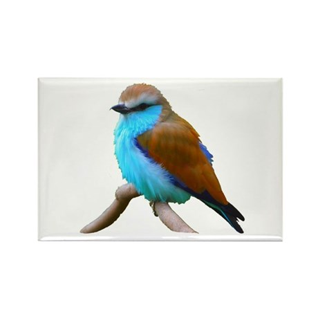 Bluebird Rectangle Magnet