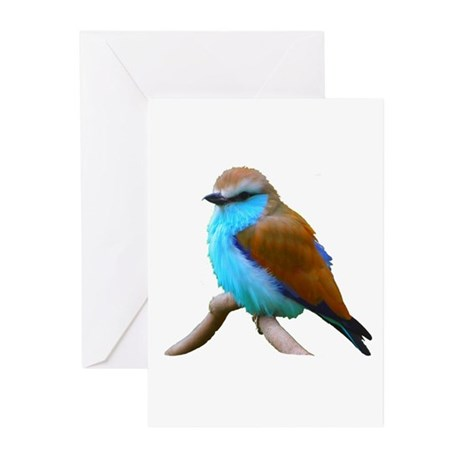 Bluebird Greeting Cards (Pk of 10)