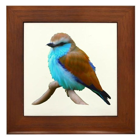 Bluebird Framed Tile