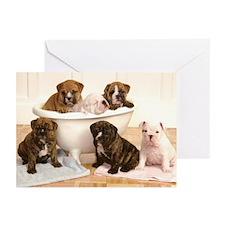 Puppy Bulldog Greeting Cards (Pk of 10)