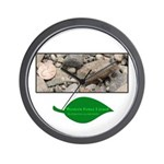 Baby Fence Lizard Wall Clock
