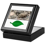 Baby Fence Lizard Keepsake Box