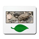 Baby Fence Lizard Mousepad