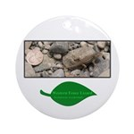 Baby Fence Lizard Ornament (Round)
