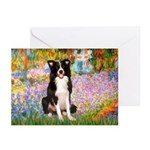 Garden & Border Collie Greeting Cards (Pk of 20)