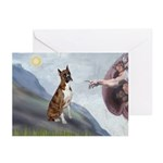 Creation...& Brindle Greeting Cards (Pk of 20)