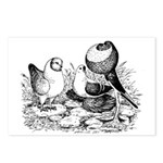 Pigeon Trio Postcards (Package of 8)