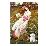 Windflowers / Maltese Postcards (Package of 8)