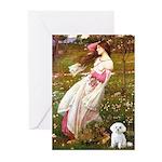 Windflowers / Maltese Greeting Cards (Pk of 20)