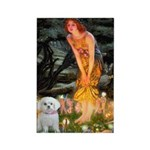 Fairies & Maltese Rectangle Magnet (10 pack)