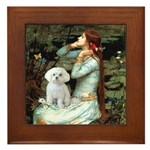 Ophelia's Maltese Framed Tile