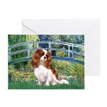 Bridge / Cavalier Greeting Card