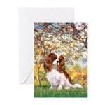 Spring & Cavalier Greeting Cards (Pk of 20)