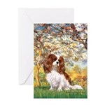 Spring & Cavalier Greeting Card