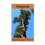 Sequoia NP (Vertical) Rectangle Decal