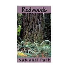 Redwoods National Park (Vertical) Decal