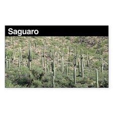 Saguaro National Park Rectangle Decal