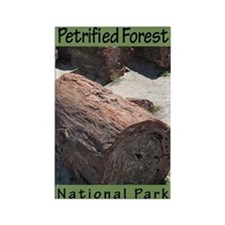 Petrified Forest National Par Rectangle Magnet