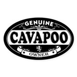 CAVAPOO Oval Decal