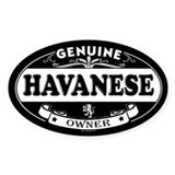 HAVANESE Oval Decal