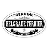 BELGRADE TERRIER Oval Decal