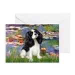 Lilies and Tri Cavalier Greeting Cards (Pk of 20)