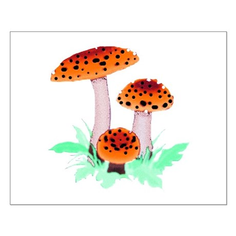 Orange Mushrooms Small Poster