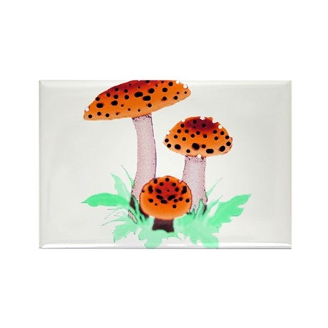Orange Mushrooms Rectangle Magnet