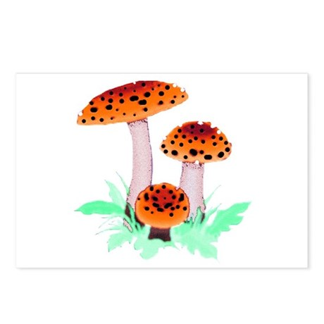 Orange Mushrooms Postcards (Package of 8)
