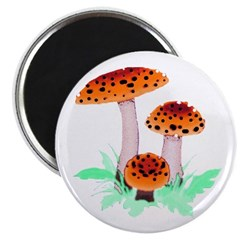 "Orange Mushrooms 2.25"" Magnet (100 pack)"