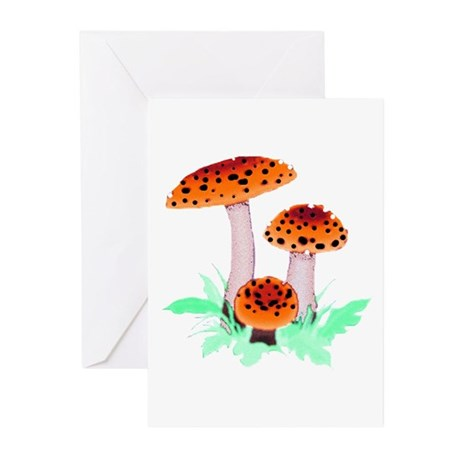 Orange Mushrooms Greeting Cards (Pk of 10)