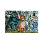 Lilies & Chihuahua Rectangle Magnet (10 pack)
