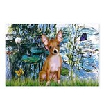 Lilies & Chihuahua Postcards (Package of 8)
