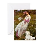 Windflowers / Coton Greeting Card
